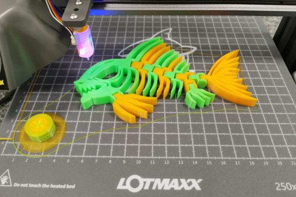 LOTMAXX SC-10 Shark Review 1