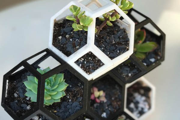 Plantygons